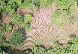 Tamarindo Labyrinth
